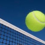 Tennis ball and net — Stock Photo