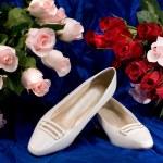 Women's dress shoes — Stock Photo #7454426