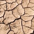 Stock Photo: Cracked mud