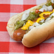 Hotdog — Stock Photo #7454475
