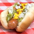 Hot dog during summer - Stock Photo