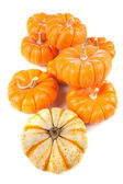 Group of pumpkins on white — Stock Photo