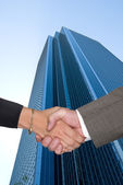 Man and woman shaking hands at business park — Stock Photo