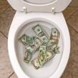 Stock Photo: Toilet and money