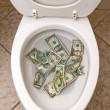 Toilet and money — Stock Photo