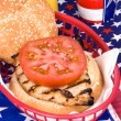Chicken burger on Fourth of July — Stock Photo #7637581