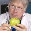 Doctor examines an apple — Stock Photo