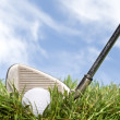 Golf club and ball in the rough — Stock Photo #7637945