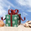 Royalty-Free Stock Photo: Christmas present on beach