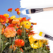 Colorful wildflowers painted in white canvas - Stock Photo