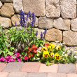 Flower garden along stone wall — Stock Photo