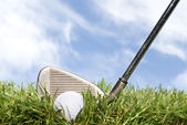 Golf club and ball in the rough — Stock Photo