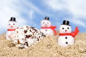 在海滩上堆雪人 — 图库照片