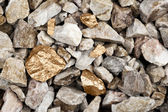 Golden nuggets in river bed — Stock Photo