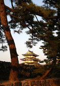 The historic castle in japan — Foto de Stock