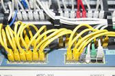 Red, yellow, white and green network cables — Stock Photo
