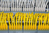 Yellow and white network cables — Stock Photo