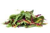 Salad Leaves — Stock Photo