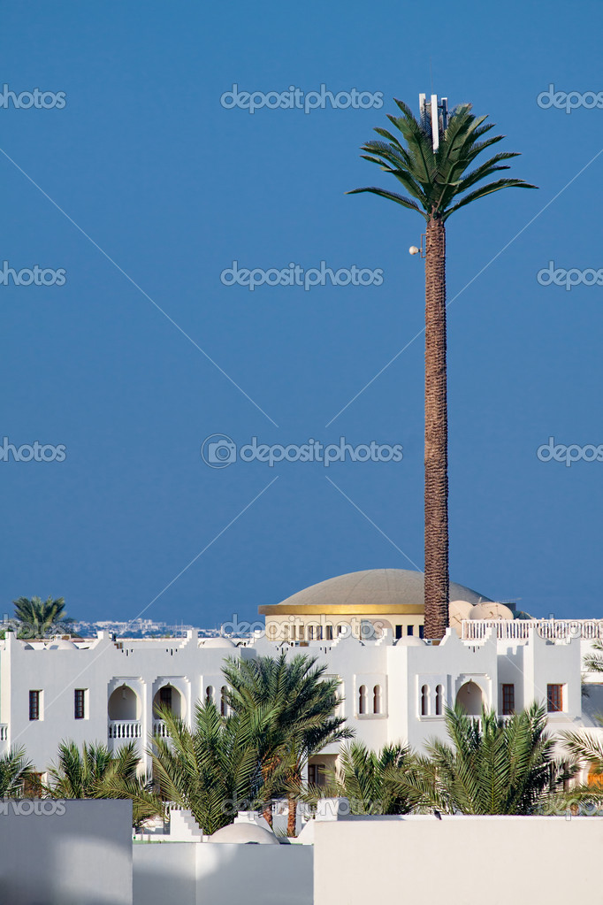 Gsm transmitter against the blue sky, disguised as a palm tree in Egypt  Stock Photo #7690076