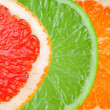 Citrus slices - Stock Photo