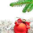 Branch of christmas tree — Stock Photo #7766074