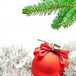 Branch of christmas tree — Stockfoto #7766074