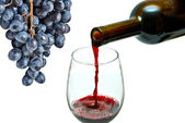 Red wine pouring down from a wine bottle — Stock Photo