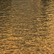 Water Ripples — Foto Stock