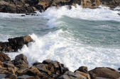 Wave on the coast — Stock Photo