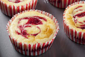 Fresh Cheesecake Muffin — Stock Photo