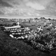 Cemetary on Easter Island. - Stock Photo