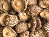 Dried shiitake mushrooms — Stok fotoğraf
