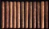 Cigarr — Stockfoto