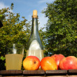 In the garden - fresh homemade cider — Stock Photo