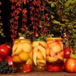 Fruits preserves - autumn in the garden — Stock Photo