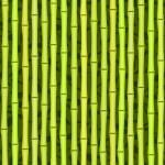 Seamless green bamboo texture — Stock Vector