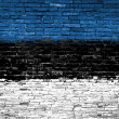 Estonia flag painted on wall — Stock fotografie