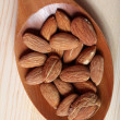 Almond — Stock Photo #6758975