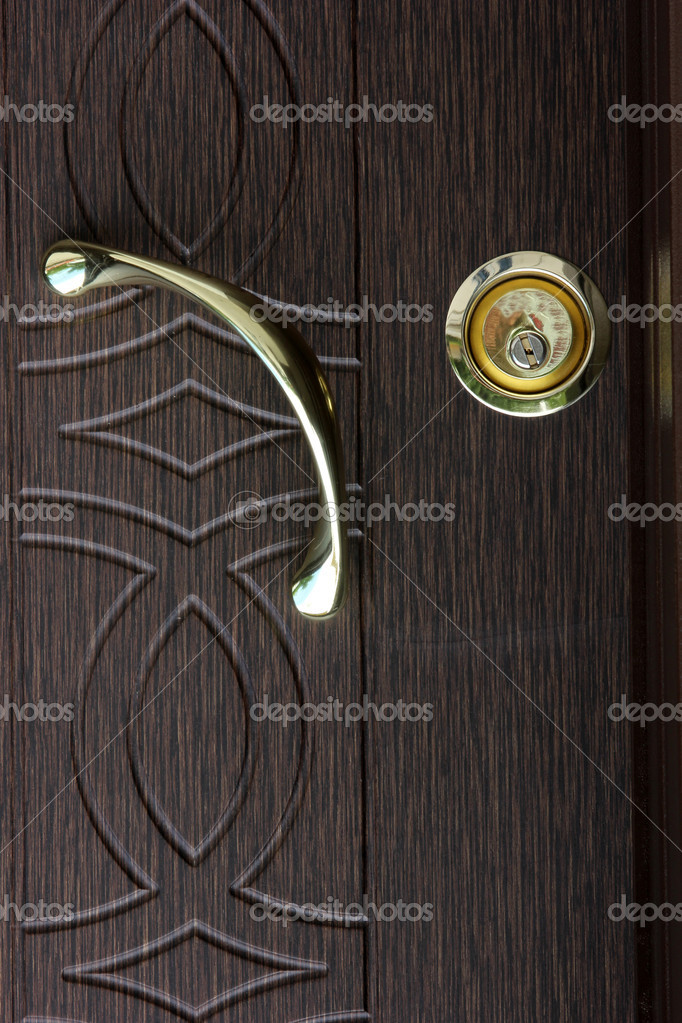 Wood door — Stock Photo #6986509