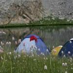 Camping — Stock Photo