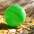 Green ball — Stock Photo #7318167