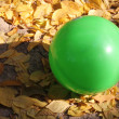 Green ball — Stock Photo #7318192