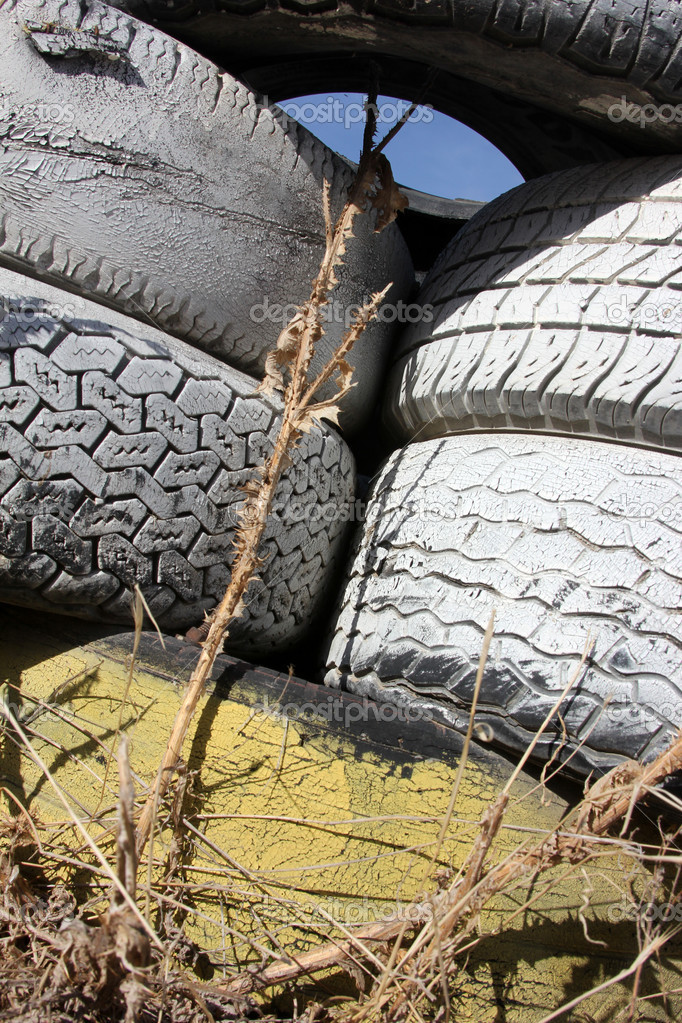 Old Tires  — Stock Photo #7895820
