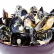 Bowl of mussels with cream sauce — Stock Photo