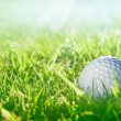 Stock Photo: Golf ball on green grass course, closeup shot