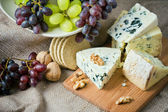 Cheese still life with red grapes, walnuts and crackers — Stock Photo