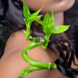 Beautiful woman with bamboo leaves, closeup shot — Stock Photo