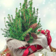 Christmas presents under the christmas tree — Stock Photo