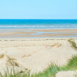 Sand beach of Formby near Liverpool, the North West Coast of Eng — Stock Photo #6978111