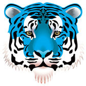 Blue tiger head — Stock Vector